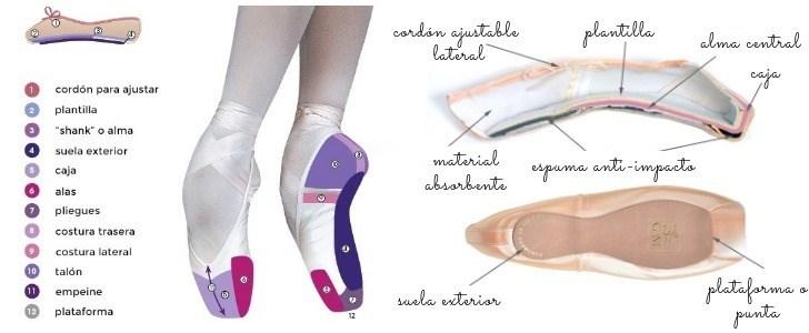 anatomia-zapatillas-o-puntas-de-ballet